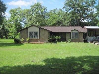 Brazoria Single Family Home For Sale: 21171 Highway 36