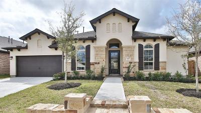 Friendswood Single Family Home For Sale: 832 Galloway Mist Lane
