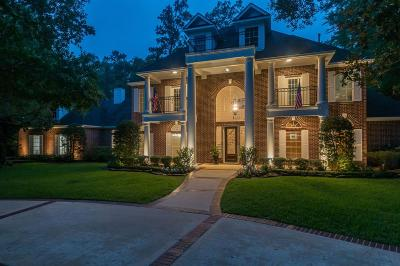 The Woodlands Single Family Home For Sale: 14 Red Sable Point
