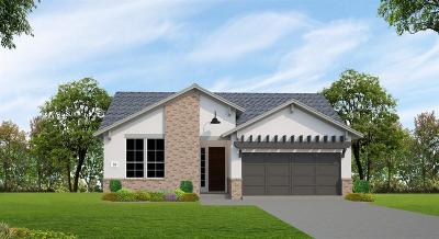Houston Single Family Home For Sale: 13223 Fairfield Arbor Drive