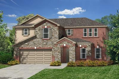 Pearland Single Family Home For Sale: 3805 Canterbury Park Drive