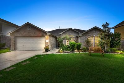 Pearland Single Family Home For Sale: 3904 Winding Forest Drive