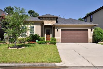 Shenandoah Single Family Home For Sale: 28946 Twisted Oak Drive