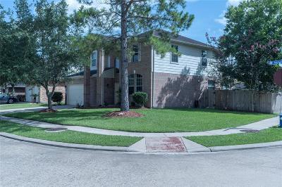 Houston Single Family Home For Sale: 11234 Agave Ridge Lane