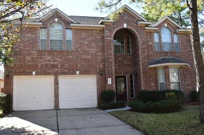 Tomball Single Family Home For Sale: 19043 North Canyon Drive