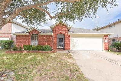 Katy Single Family Home For Sale: 20810 Camphor Tree Drive