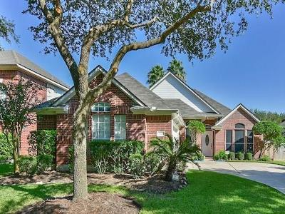 Sugar Land Single Family Home For Sale: 415 Darby Trails Drive