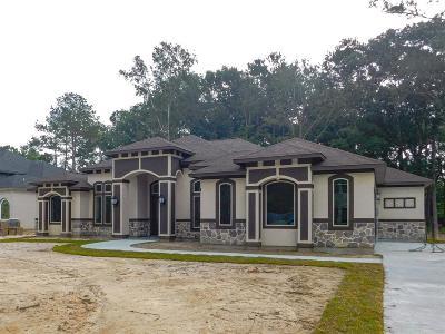 Porter Single Family Home For Sale: 22861 Tigris Drive
