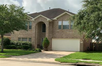 Manvel Single Family Home For Sale: 3034 Texas Trail Lane