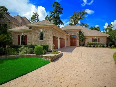 Spring Single Family Home For Sale: 25035 Bow Wood Court