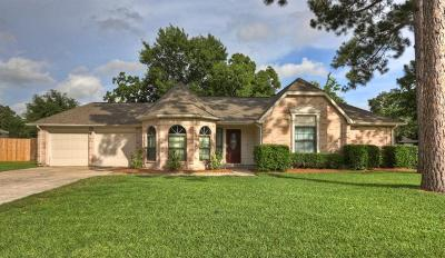 Friendswood Single Family Home For Sale: 907 Essex Drive