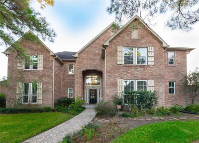 Katy Single Family Home For Sale: 1630 Kings Castle Drive