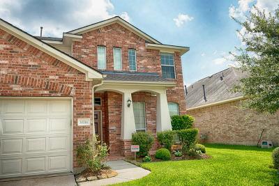 Tomball Single Family Home For Sale: 20214 Niagara Falls