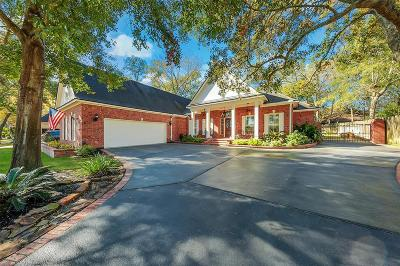 Montgomery Single Family Home For Sale: 150 Lake View Circle