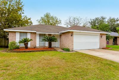 Sugar Land Single Family Home For Sale: 10115 Hollow Canyon
