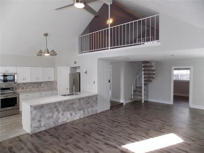 Houston Single Family Home For Sale: 2303 Gray Falls Drive