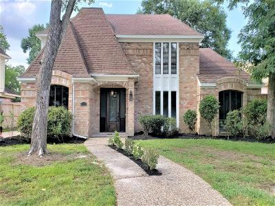 Houston Single Family Home For Sale: 1110 Ivy Wall Drive
