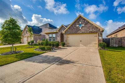 Single Family Home For Sale: 19635 Travis Cannon Lane