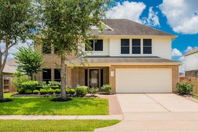 Pearland Single Family Home For Sale: 3613 Canterbury Park Drive