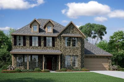 Houston Single Family Home For Sale: 10031 Tripp Drive