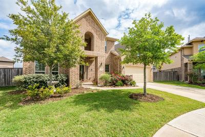 Fulshear Single Family Home For Sale: 27706 Ashbrook Falls Court