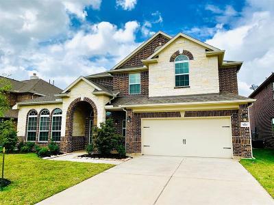 Rosharon Single Family Home For Sale: 9810 Clear Diamond Drive