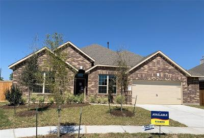 Galveston County, Harris County Single Family Home For Sale: 12007 Talmadge Reach Drive