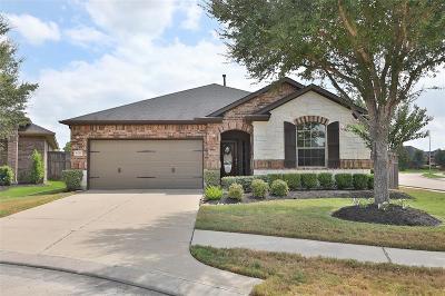 Fulshear Single Family Home For Sale: 6111 Fulshear Cove Court