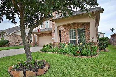 Tomball Single Family Home For Sale: 12110 Canyon Falls Drive