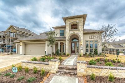 Cypress Single Family Home For Sale: 16902 Avion Village Drive