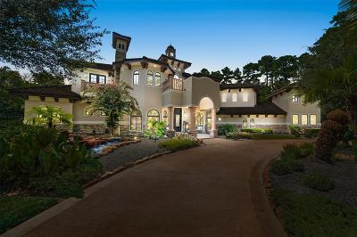 The Woodlands Single Family Home For Sale: 43 Philbrook Way