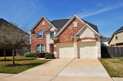 Riverstone Single Family Home For Sale: 5210 Pebble Bluff Lane