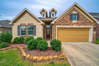 Missouri City Single Family Home For Sale: 3934 Medici Court