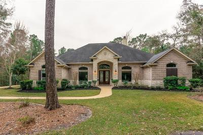 Magnolia Single Family Home For Sale: 11403 Summer Lake Drive