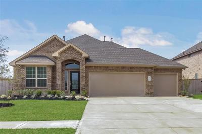 Tomball Single Family Home For Sale: 12703 Sherborne Castle
