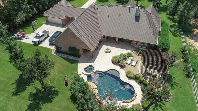 Magnolia Single Family Home For Sale: 36532 High Chaparral