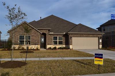 Texas City Single Family Home For Sale: 2610 Topsail Drive