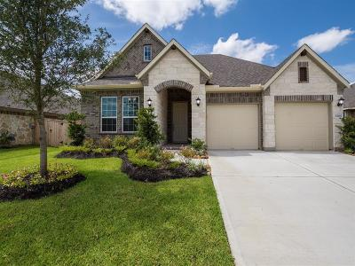 Tomball Single Family Home For Sale: 12107 Brighton Brook Lane