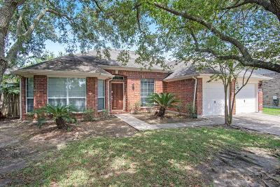 Pearland Single Family Home For Sale: 3102 Amerson Drive