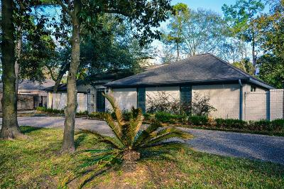 Houston Single Family Home For Sale: 15 Briar Hill Drive