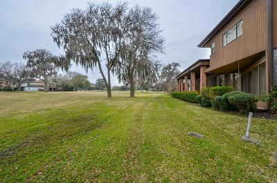 Fort Bend County Single Family Home For Sale: 10 Charleston Street S