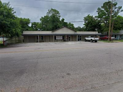 Alvin Single Family Home For Sale: 206 W House Street