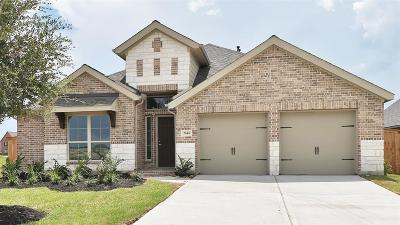Manvel Single Family Home For Sale: 2646 Cutter Court