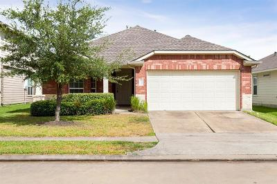 Katy Single Family Home For Sale: 19438 Plantation Cove Lane