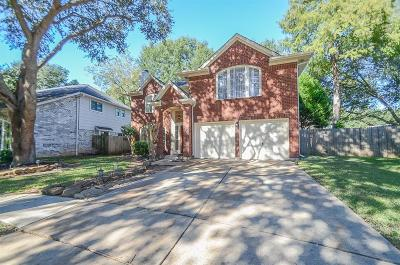 Sugar Land Single Family Home For Sale: 4111 New Meadows Court