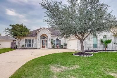 Harris County Single Family Home For Sale: 19010 Rustling Ridge Lane