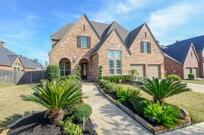 Sugar Land Single Family Home For Sale: 4207 Pebble Heights Lane