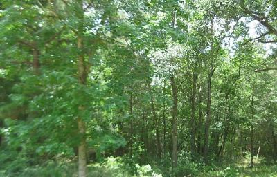 Conroe Residential Lots & Land For Sale: 300 Wade Circle W