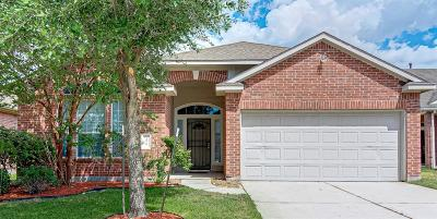 Houston Single Family Home For Sale: 19910 Sapphire Mist Court