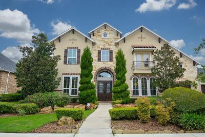 Sugar Land Single Family Home For Sale: 6207 Duke Trail Lane